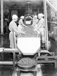 Van de Poll 1933 Meisjes conservenfabriek Breda